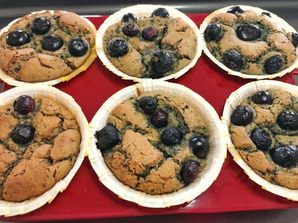 Diabetic Blueberry Muffins - Grain free Gluten free Blueberry Muffin Recipe